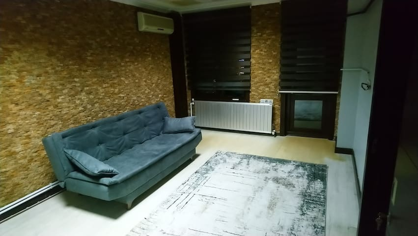 Comfortable couch in a cozy flat at city center