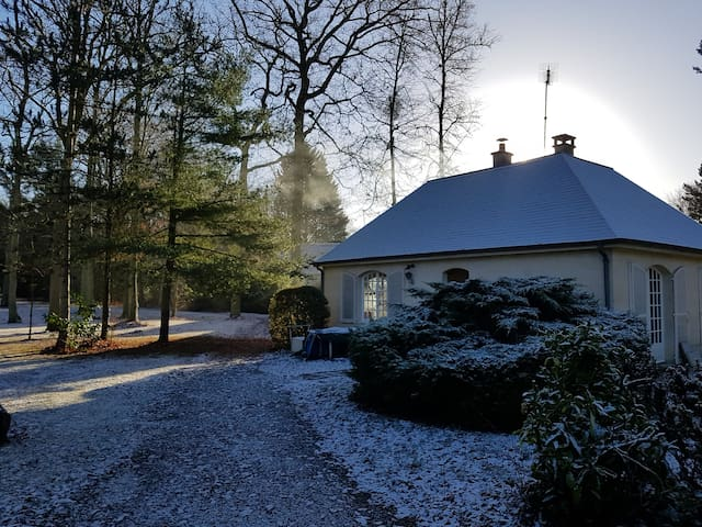 Enjoy the Nature in our guesthouse in the forest