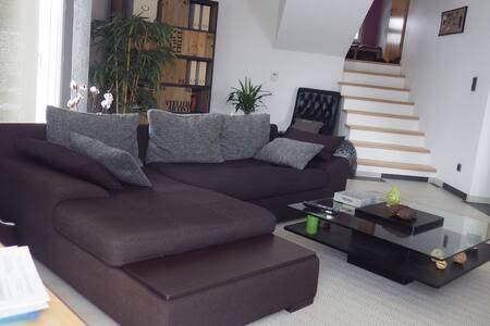 Maison moderne - Sochaux - 独立屋