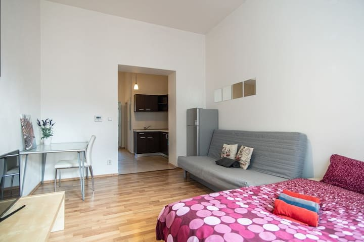.Studio 2 - Family/Friendly flat close to center