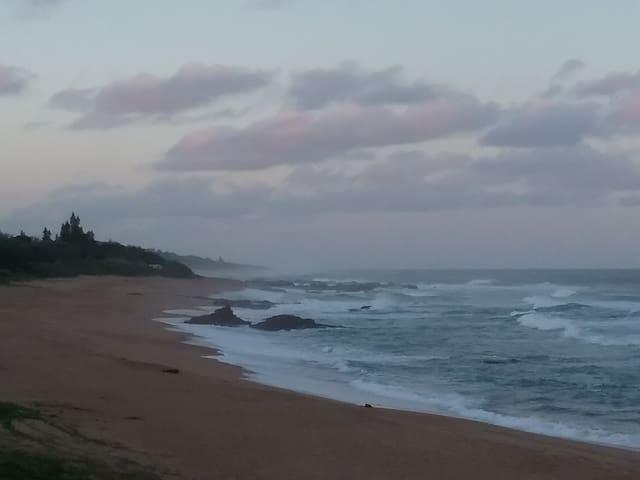 Pets Inn by the Ocean