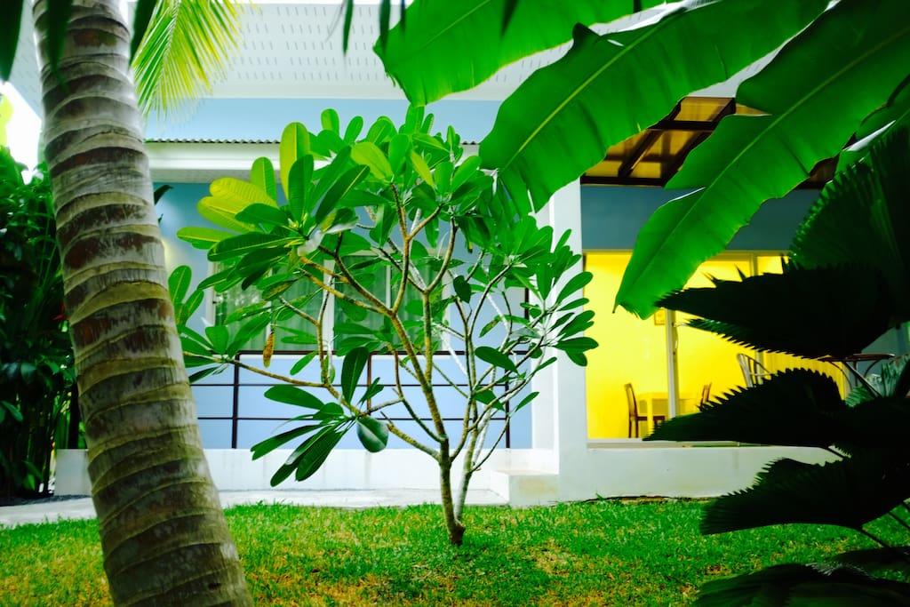The Nature House Aonang Krabi Thailand