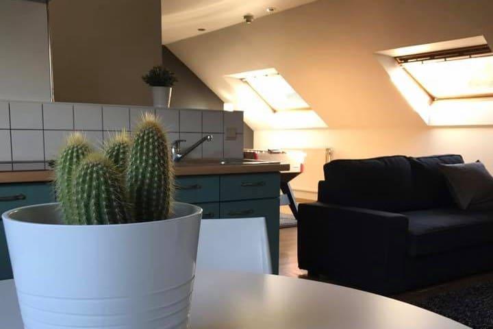 Vaste et lumineux appartement entièrement rénové - Namur - Apartment
