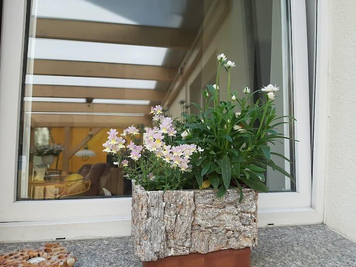 Ruhige Wohnung in Rostocks City mit Gartenterrasse