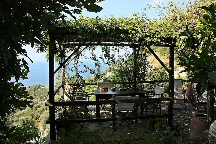 Lovely house with amazing sea view in Old Village - Alonnisos - House