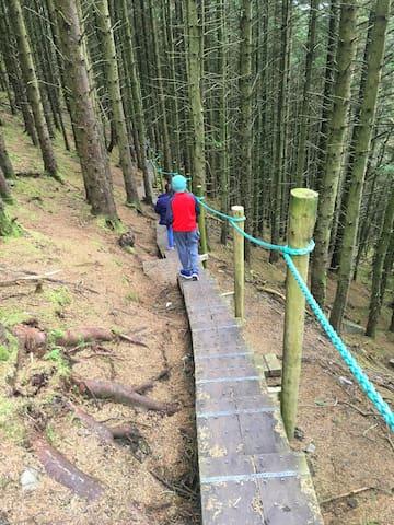 Walkway down from Knocknarea