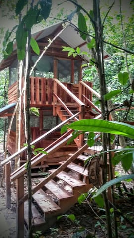 Ground Level Forest Cabin #2 - Georgetown, Demerara-Mahaica, Guyana - Cabaña