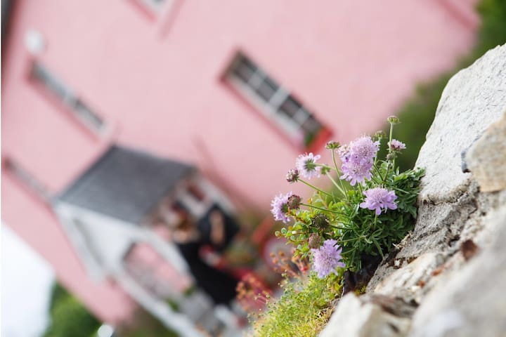 The Pink House in Ballinahown Village Athlone