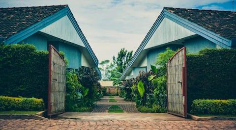 Kolibri Paradise n°1