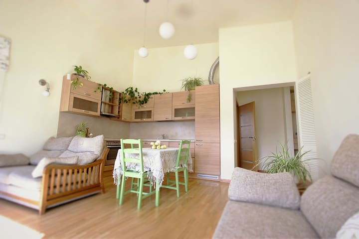 2 bedrooms apartment - Vilnius - Apartamento