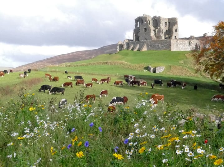 The Castle Byre