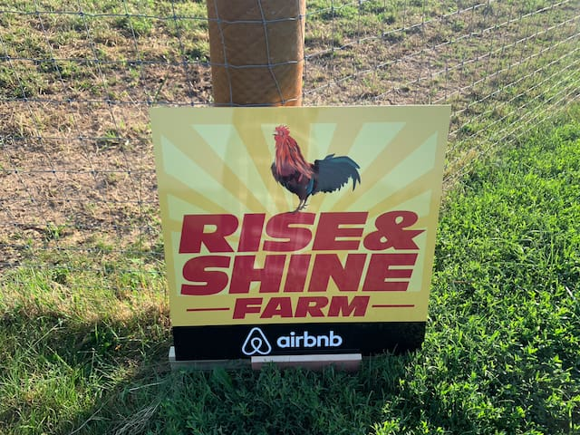 Rise & Shine Farm