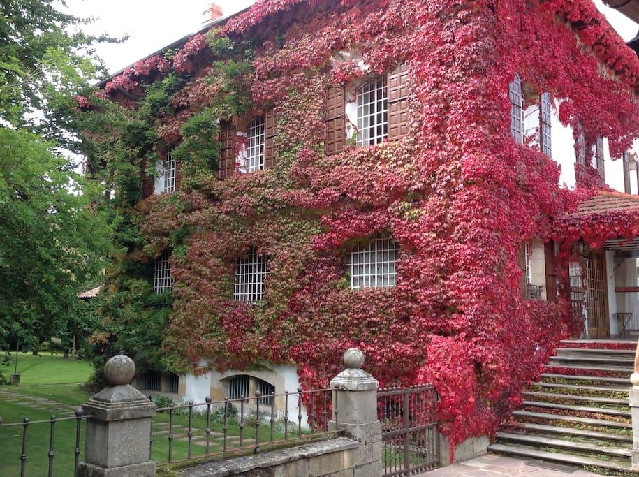 Fachada en otoño