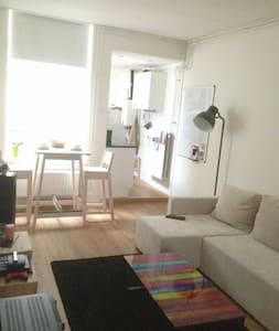 Charming and Cozy Apartment in Leiden Centre - Leiden - Appartement