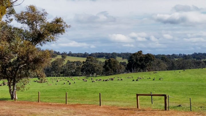 Australian Farm Life at its Best