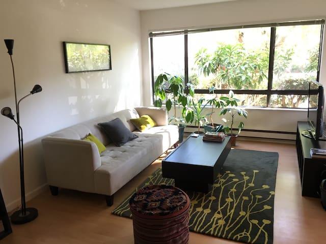 1br Palo Alto Apartment Near Stanford and Downtown - Palo Alto - Apartment