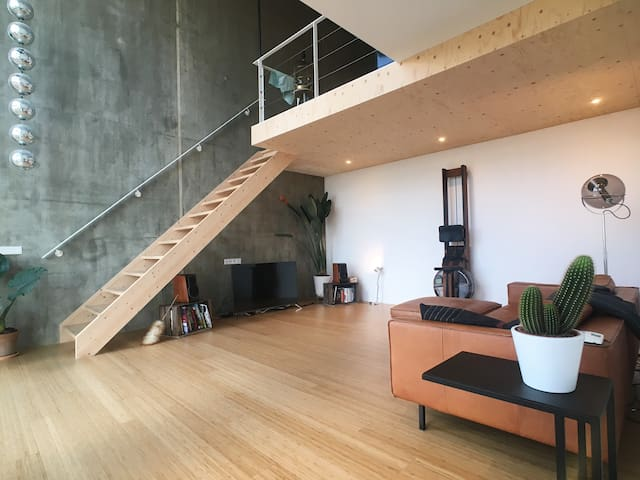 Luxury Amsterdam loft apartment with free parking