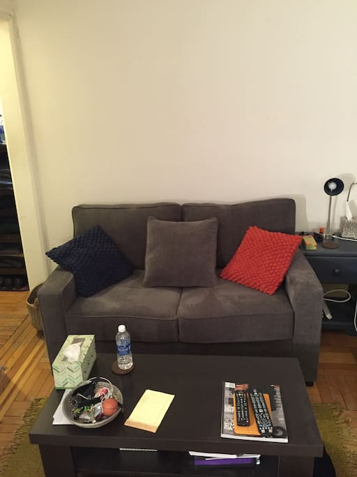 Cozy 2 seat couch