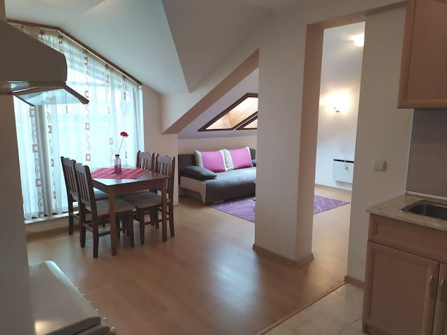 Spacious attic apartment in Bansko