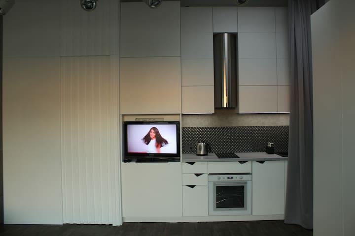 Minimalistic designer's loft-type apartment