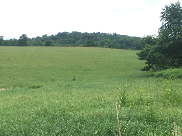 HillBerry Camping - Rolling Hills in Berkshire NY