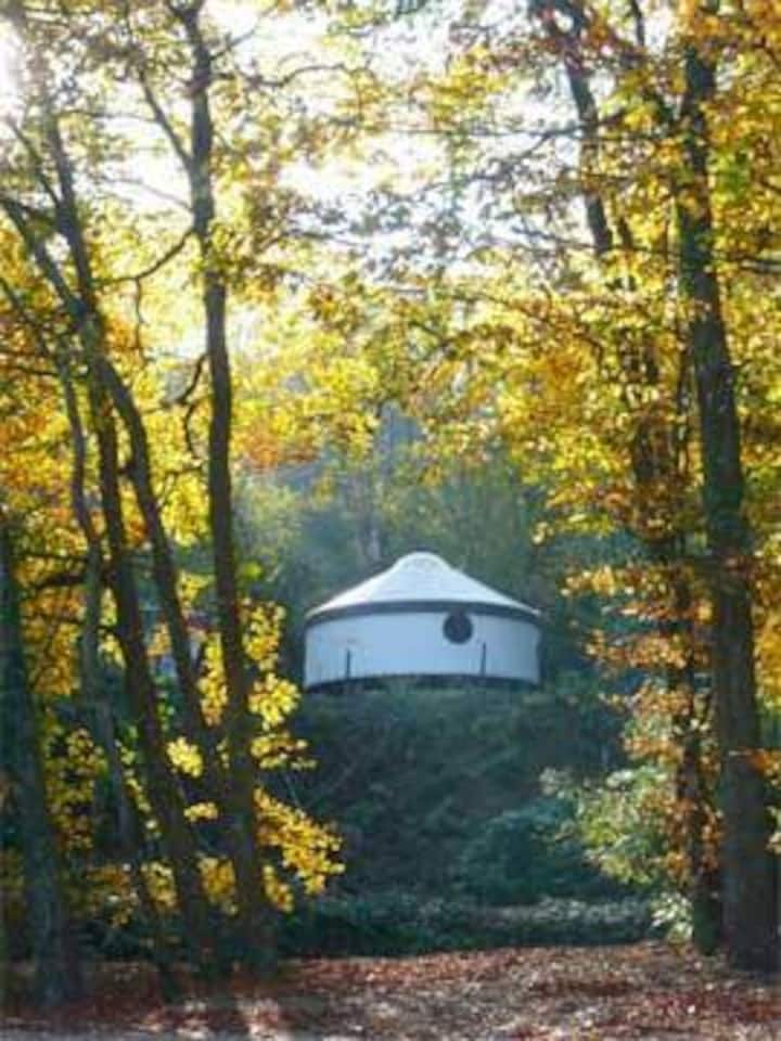 Quaint Double Yurt in the Woodland Village
