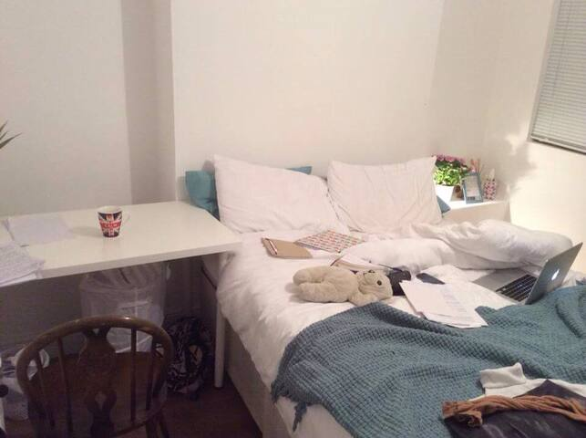 Lovely room in lower Clapton6 - Londen - Huis