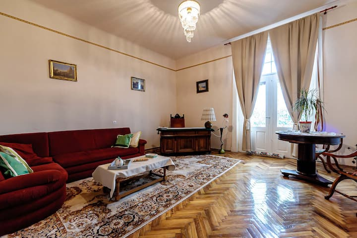 A generous apartment in the city center