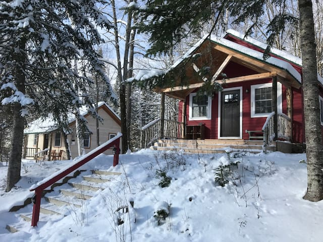 Merle: Cabin on 230 Acres with Trails & Lake