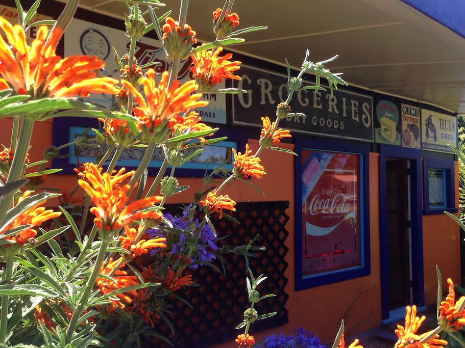 The Old Kensington Store. Orange and blue plantings, in season, highlight the colour scheme