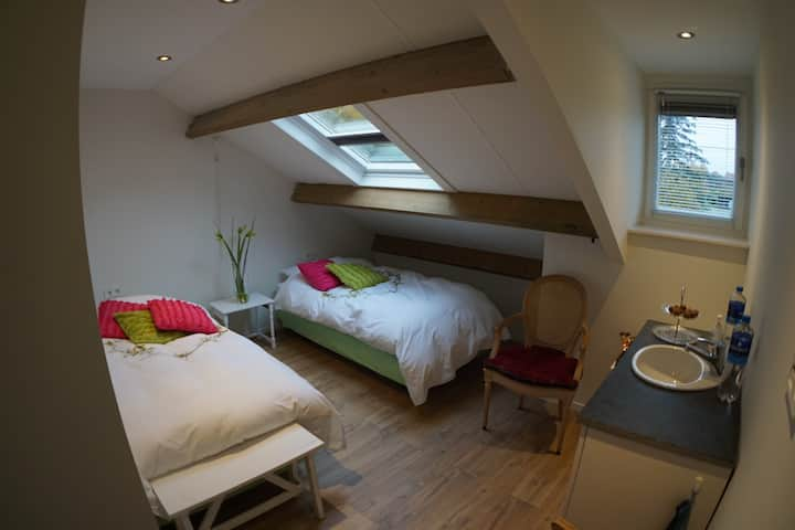 Private room with own sink (10 min from Eindhoven)