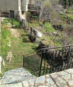 Maison de village Castagniccia - Dom
