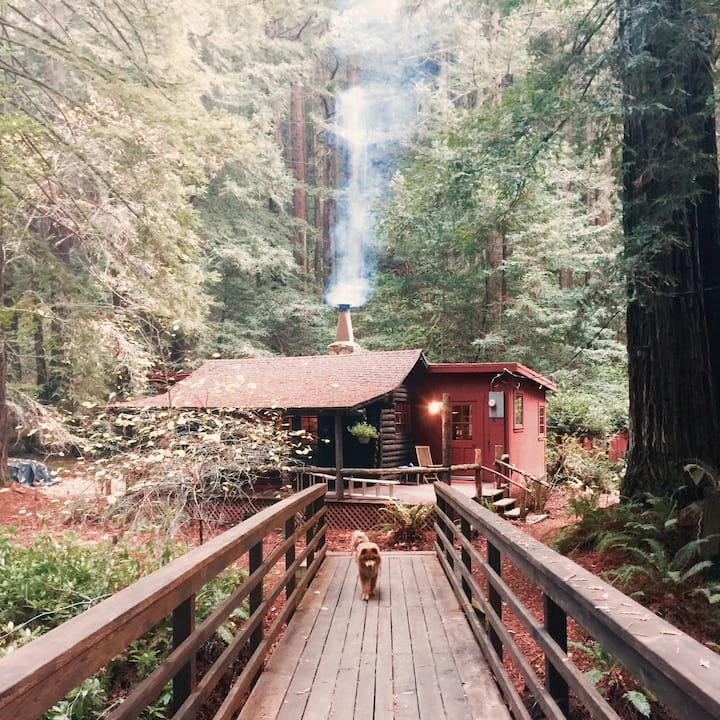 Magical Redwood Log Cabin Retreat - @NicasioNest