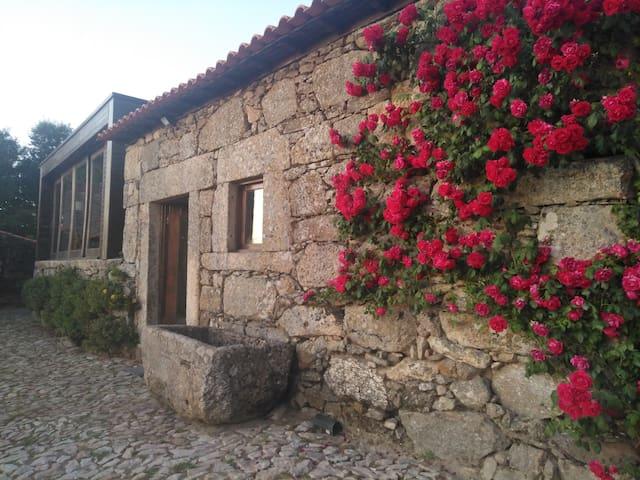 Casa das Rosas.