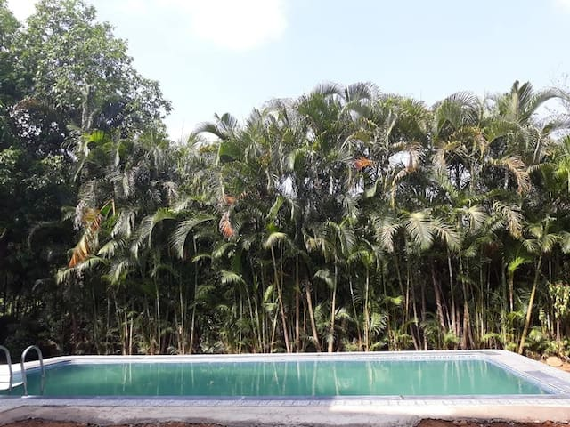 RK Bungalow in Igatpuri with Swimmin Pool