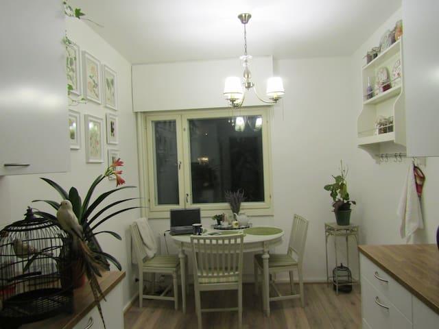 Nice renovated apartment