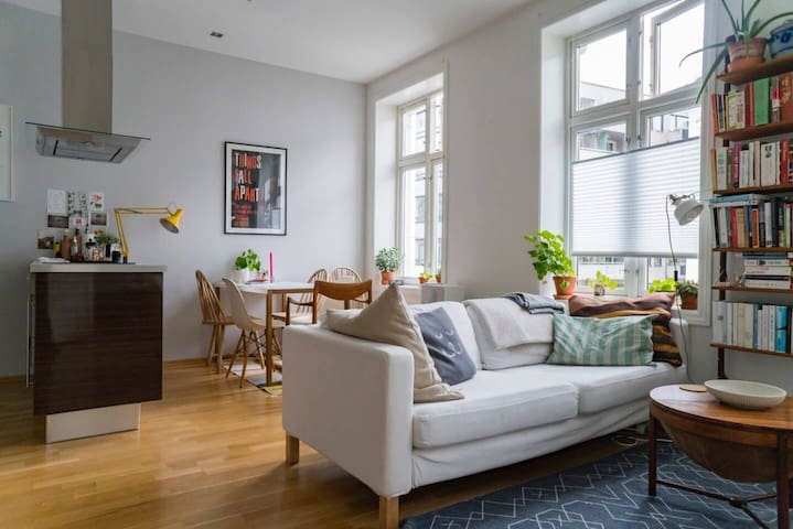 Light and modern flat in the centre of Oslo