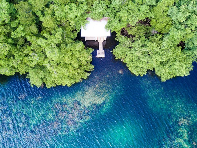 Dreamy Waterfront Treehouse on Blue Lagoon - Provincia de Bocas del Toro - House