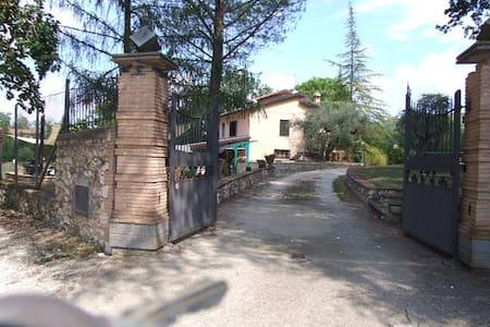 Petriachi's Villa  nella verde Umbria con piscina