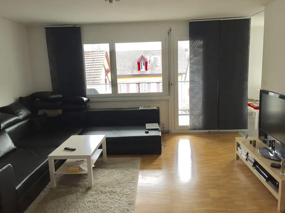 Apartment In Zurich Near Train Station