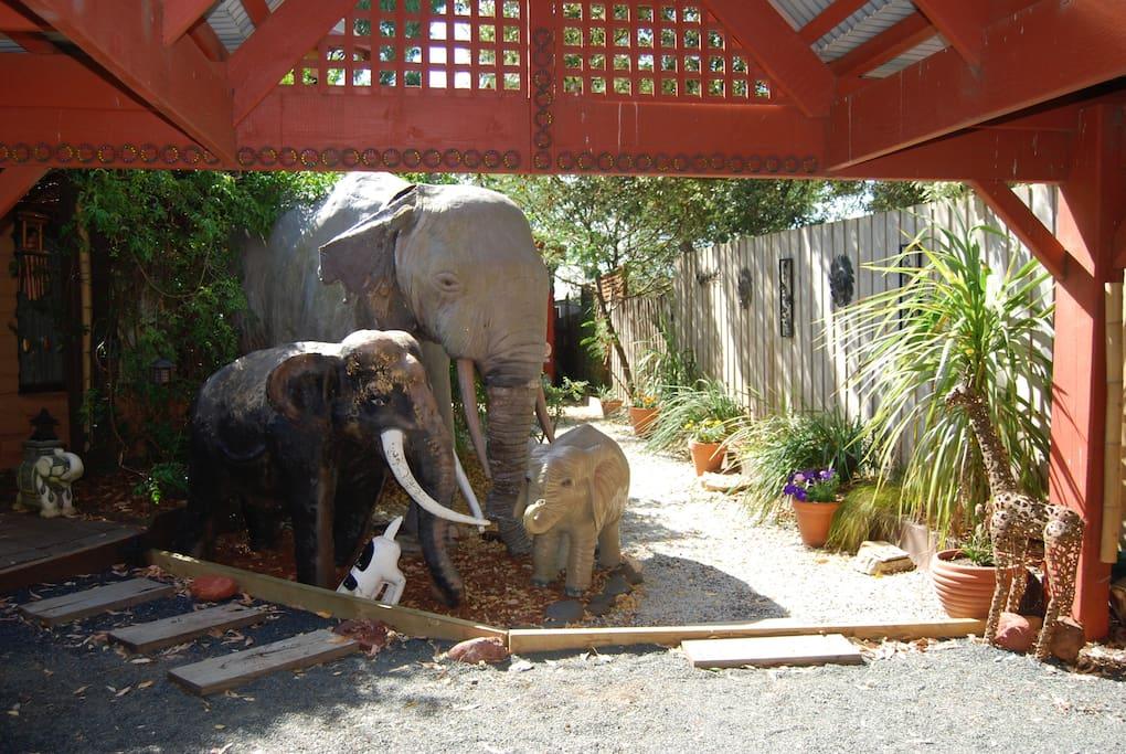 elephants meet you by the front door