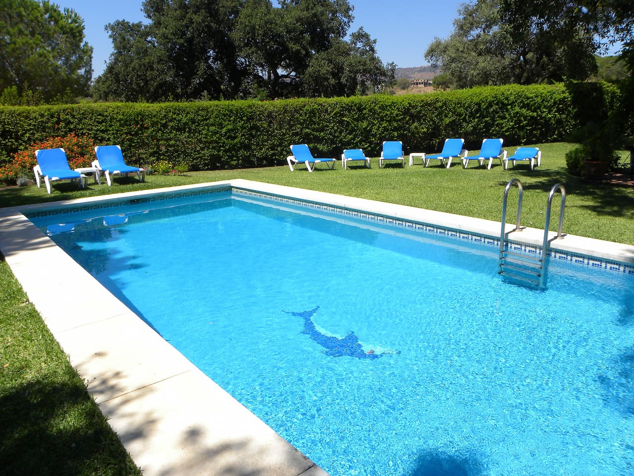Swimming pool and deck chairs