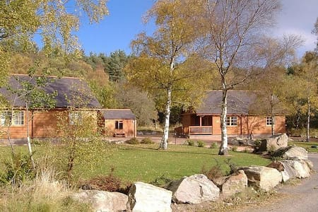 Birch and Willow Lodges - Inchmarlo