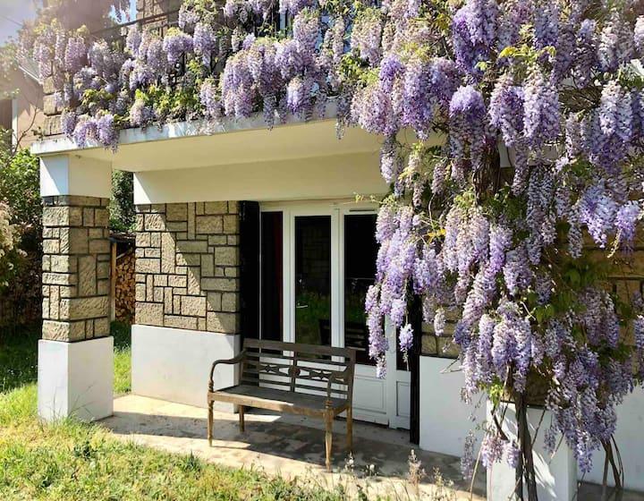Belle chambre privée (avec SDB) en rez de jardin.