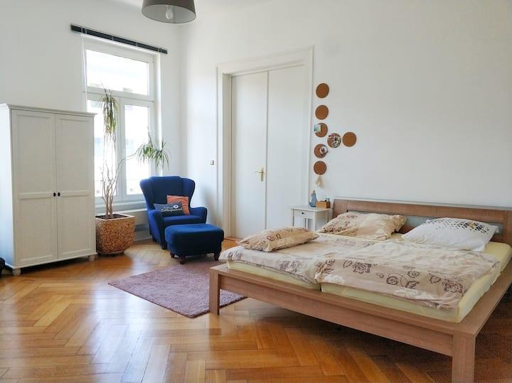 DIEZ - Center - schöne Altbauwohnung - Gästezimmer