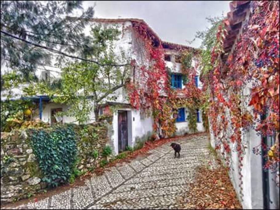 Exterior en otoño.