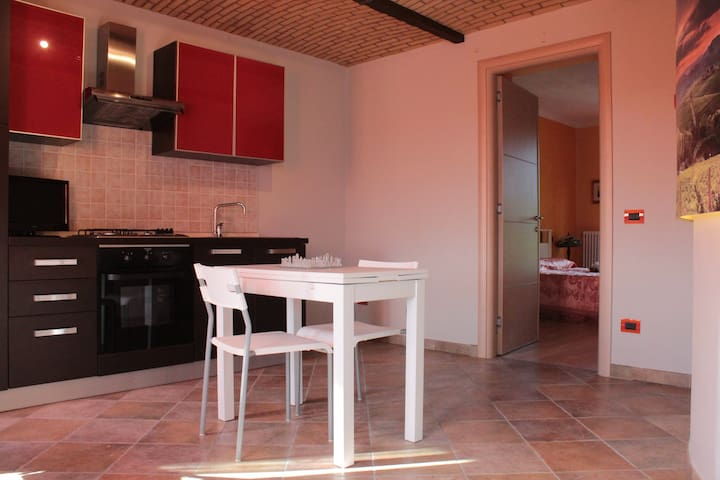 APPARTAMENTO IN CASCINALE UNESCO - Nizza Monferrato - Apartament