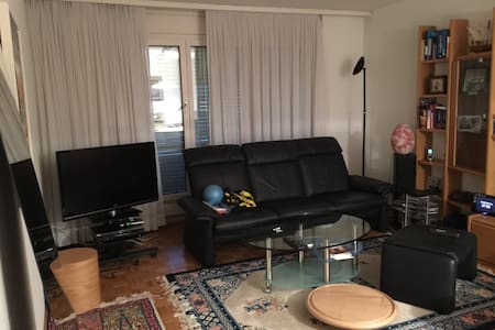 Quite flat in the heart of Basel - Birsfelden - Apartamento