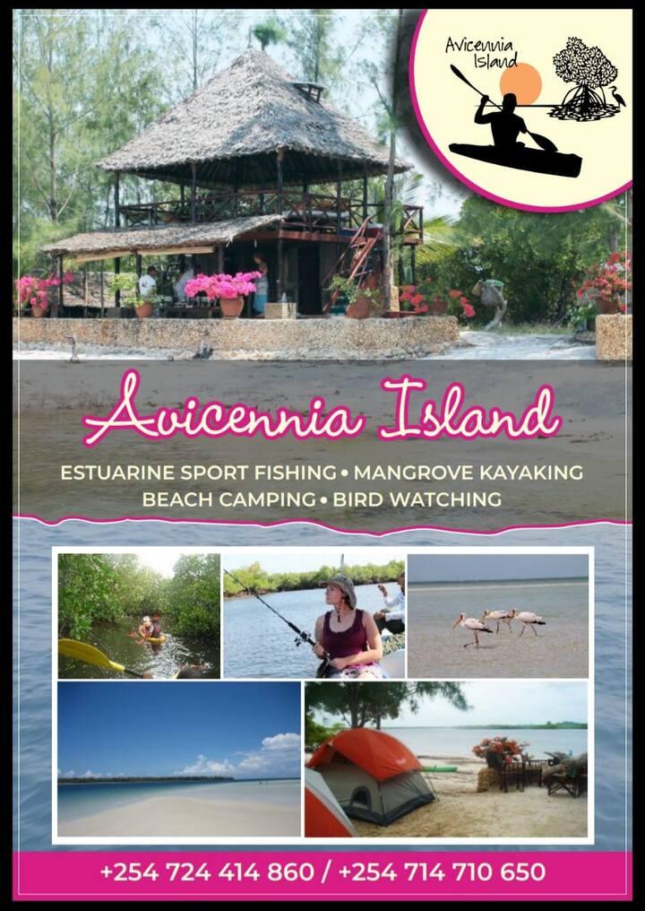 Avicennia Island