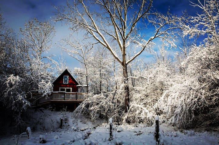 Ann Arbor Hive House Tiny House
